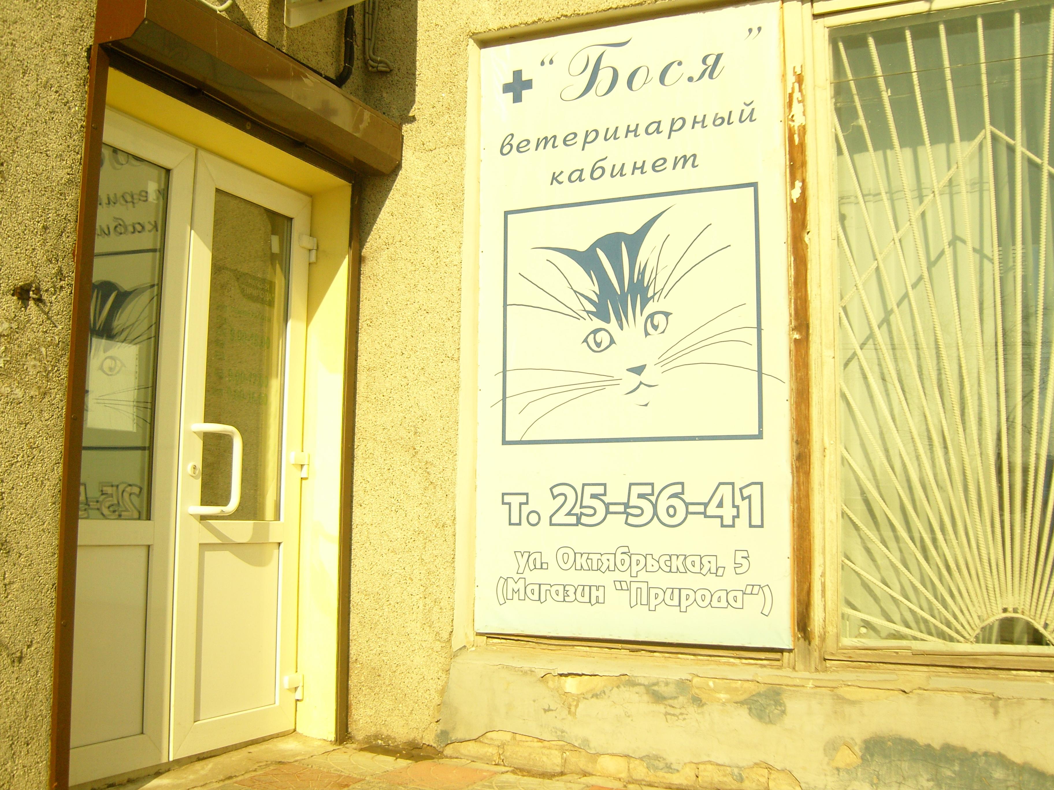 ветеринарный кабинет доктора морозова орел цены